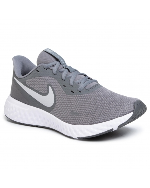 Buty NIKE - Revolution 5 BQ3204 005 Cool Grey/Pure Platinum