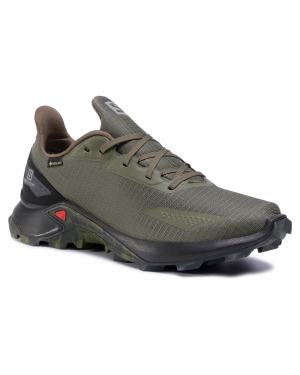 Buty SALOMON - Alphacross Blast Gtx GORE-TEX 411058 27 V0 Olive Night/Black/Ebony